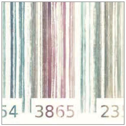 Cojín JVR Grafic